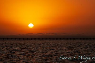 Astoria bridge sunset_3451