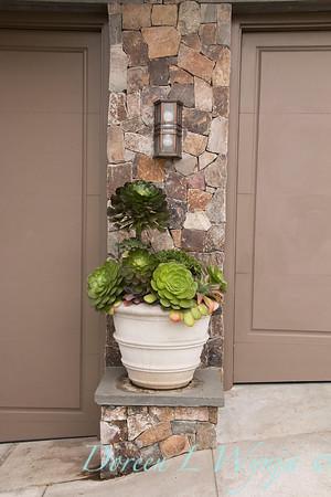 Succulent container garden_6918