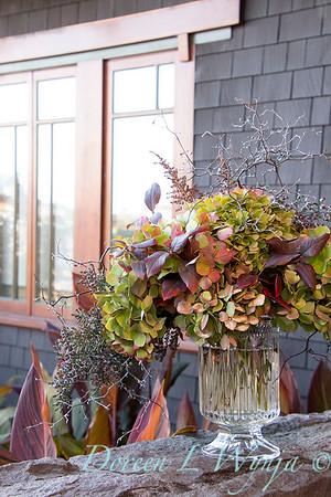 Corokia - Hydrangea fall color vase_7340