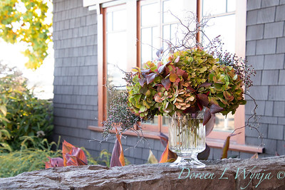 Corokia - Hydrangea fall color vase_7334