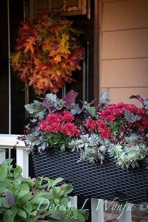 Sedum - Heuchera - Mum fall filled railing box_7378