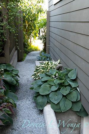 Lisa Bauer - designer's garden_1259