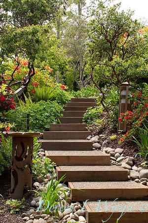 Garden Steps_001