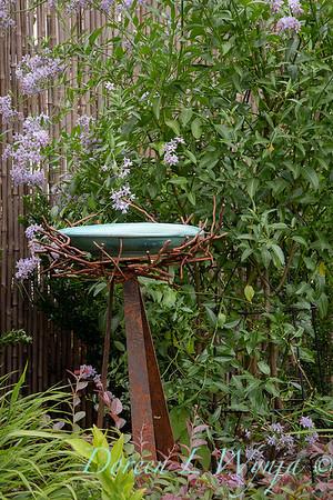 Solanum crispum metal nest birdbath_9296
