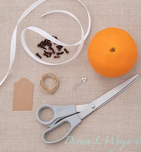 Clove and Orange holiday ball_887