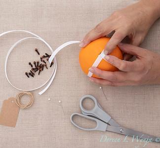 Clove and Orange holiday ball_889
