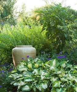 Hosta Garden Landscape_027