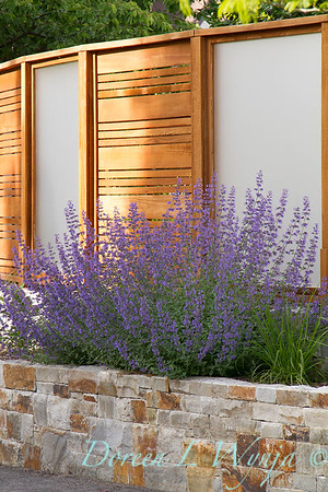 Nepeta Privacy screen_2092