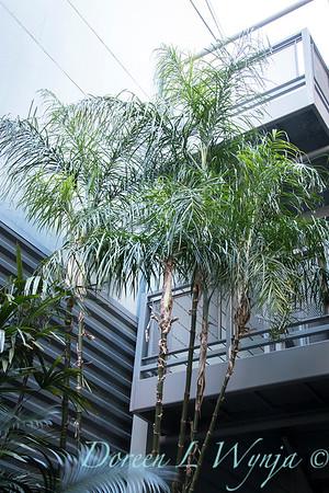 Debra's Vertical Garden_6025