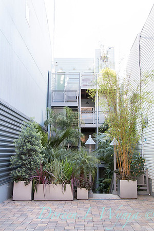 Debra's Vertical Garden_6026