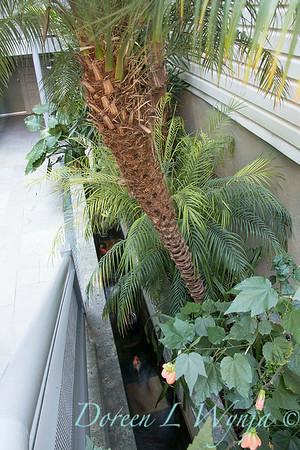 Debra's Vertical Garden_6009