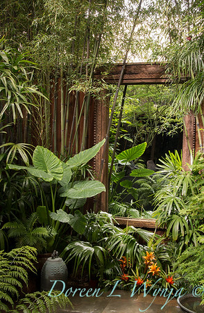 Secret Garden_5015