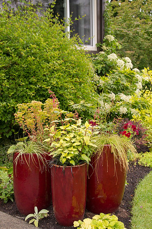 Red pottery container garden_0209