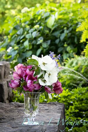 5259 Peaonia x 'Smith Opus 2' Takara - Cornus 'Venus' cut flowers_0960