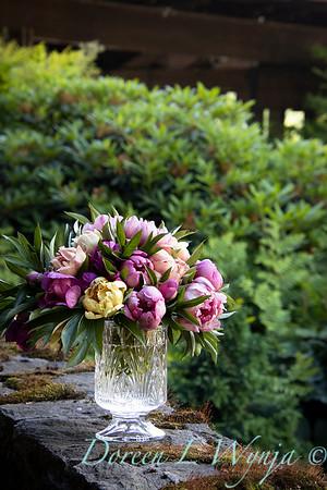 1958 Peaonia 'Singing in the Rain' - 5259 Peaonia x 'Smith Opus 2' Takara cut flowers_1052