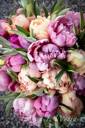 1958 Peaonia 'Singing in the Rain' - 5259 Peaonia x 'Smith Opus 2' Takara cut flowers_1063
