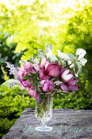 5259 Peaonia x 'Smith Opus 2' Takara - Cornus 'Venus' cut flowers_0950