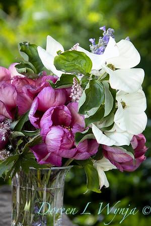 5259 Peaonia x 'Smith Opus 2' Takara - Cornus 'Venus' cut flowers_0966