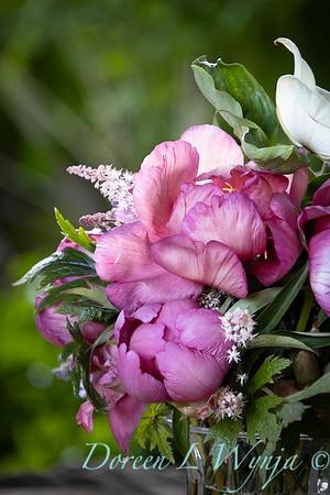 5259 Peaonia x 'Smith Opus 2' Takara - Cornus 'Venus' cut flowers_0968