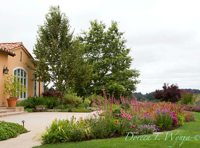 Cottage Garden_1145