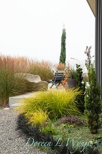 Janine & Terry's garden_1070