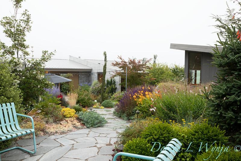 Janine & Terry's garden_1058