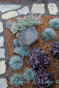 44088 Heuchera x villosa 'TNHEUGB' Black coral bells - 3667 Festuca glauca 'Elijah Blue' - 5228 Juniperus scopulorum 'MonOliver' overhead landscape_1206
