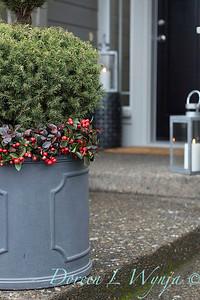 6462 Picea glauca 'Conica' – 3779 Gaultheria procumbens container_1181