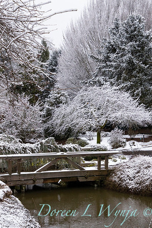 Monrovia landscape - bridge - water feature in snow_4013
