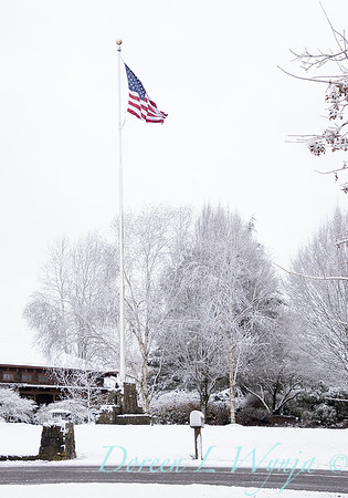 Monrovia flagpole in snow_4035