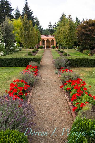 Formal Garden red geraniums_9143