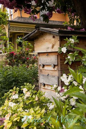 Bee hive box_1662