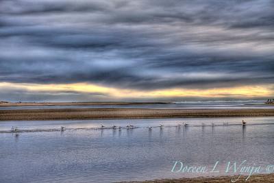Gull Shores_042