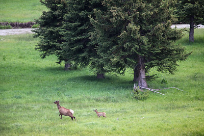 Grand Tetons National Park, Wyoming