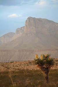 New Mexico/Texas - Guadalupe Mountains National Park
