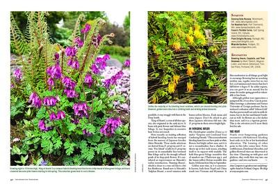 Bleeding Hearts The American Gardener JF20_Page_3