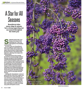 The Seattle Times 'Grow' section Oct 2020 - Story by Lorene Edwards Forkner