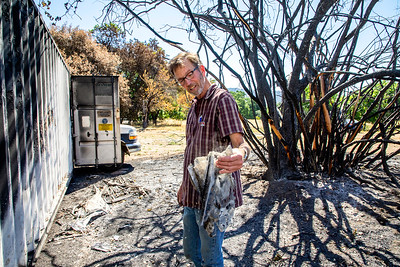 """""""This idea of defensible space is no joke."""" -Kaisel says."""