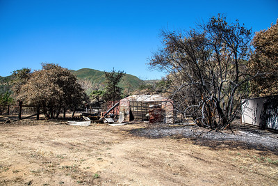 Trees, storage sheds and equipment all burned during the Sand Fire.