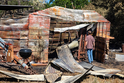 Kaisel checks the damage to a shed and his forklift, which he used to harvest his hierloom grains.