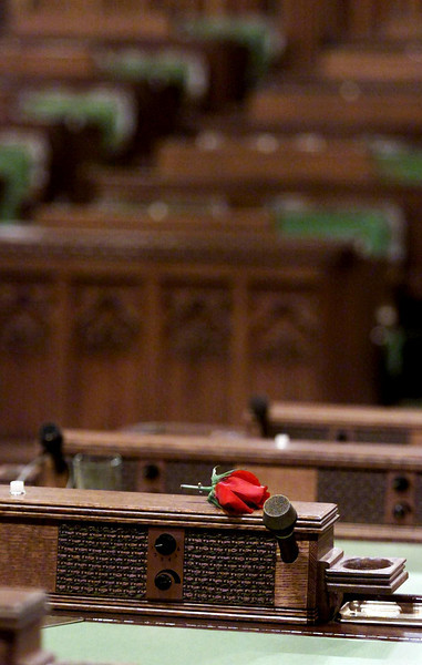 On Friday September 29, 2000, a single rose lays on a House of Commons desk after tributes were paid to the late Pierre Trudeau former Prime Minister of Canada.(CP PHOTO/Fred Chartrand)