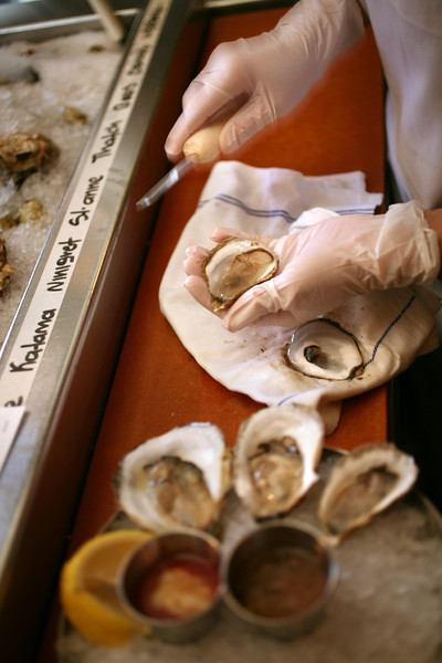 10/9/07 Boston, MA -- Adriana Munetone shucks oysters at Neptune Oyster in Boston October 9, 2007.  Erik Jacobs for the Boston Globe