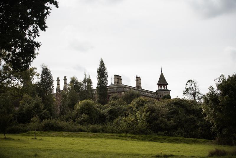 Manor_House_Trees_037