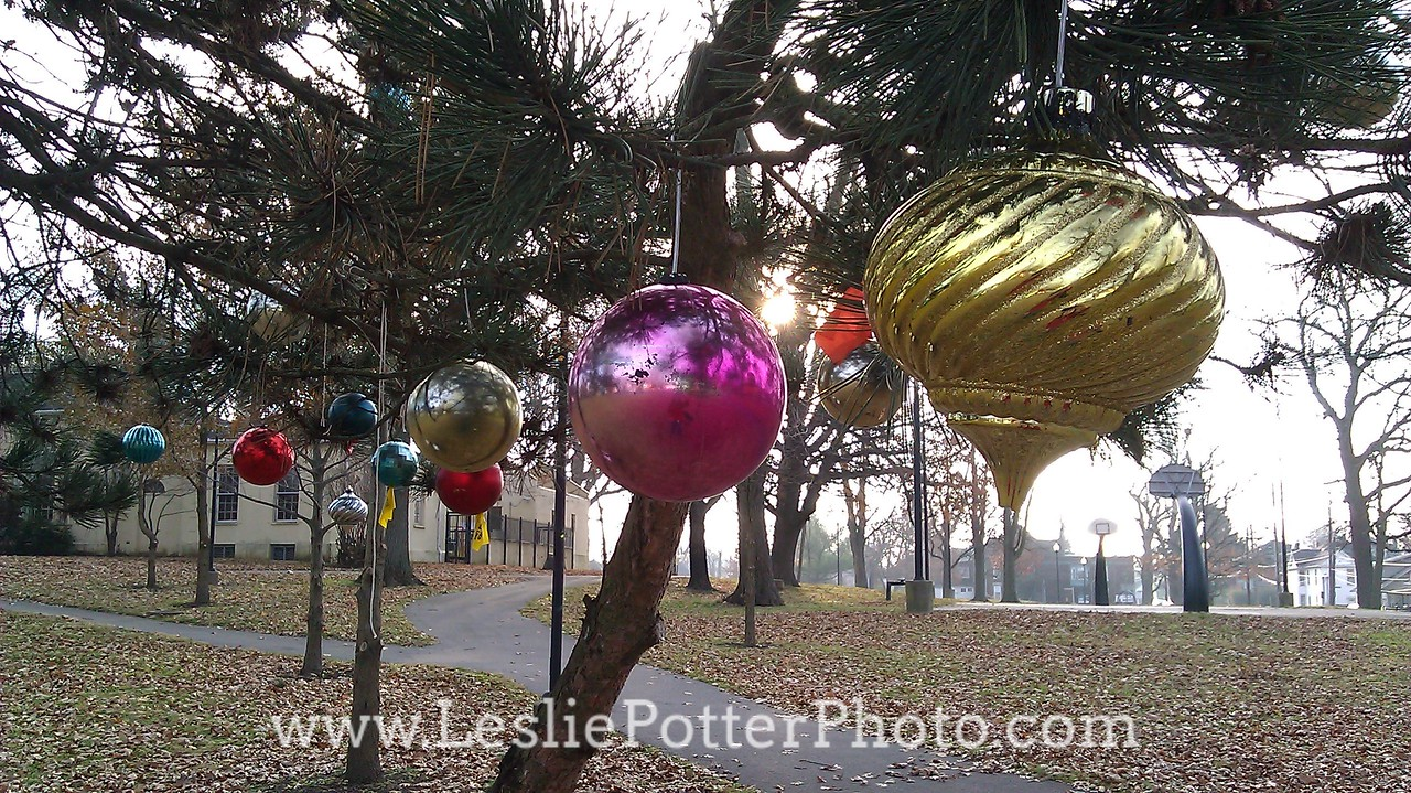 Christmas Decorations in a Public Park