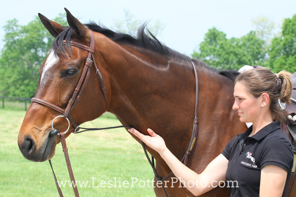 Adjusting a Standing Martingale