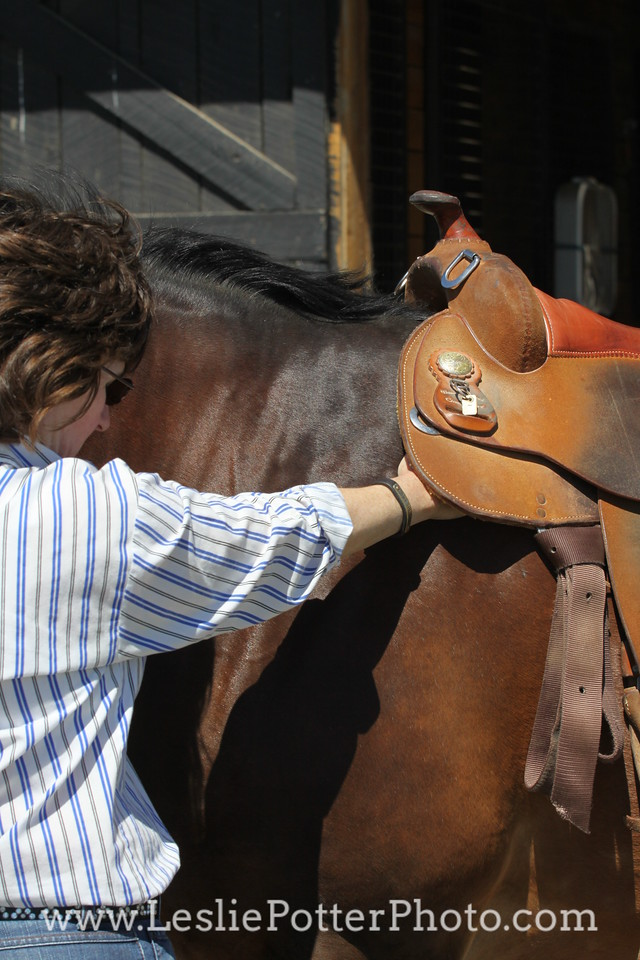 Fitting a Western Saddle
