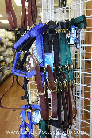 Nylon Horse Halters with Breakaway Straps