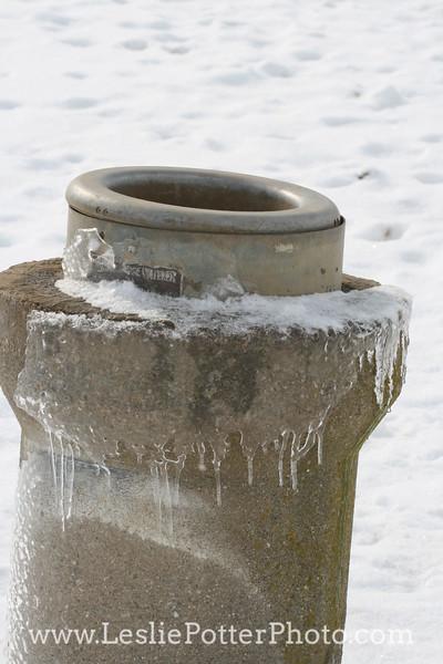 Frozen Automatic Waterer