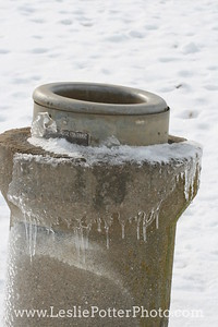 Frozen Automatic Waterer