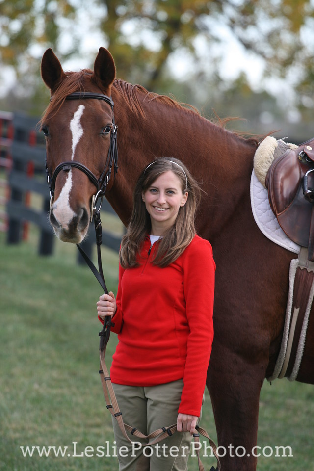 Chestnut Sport Horse with Rider